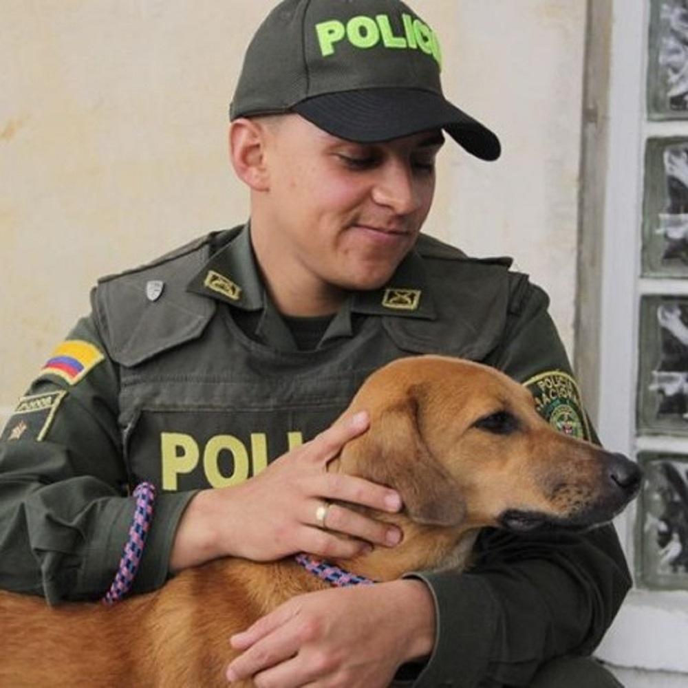 jonny cane salvo vivono casa