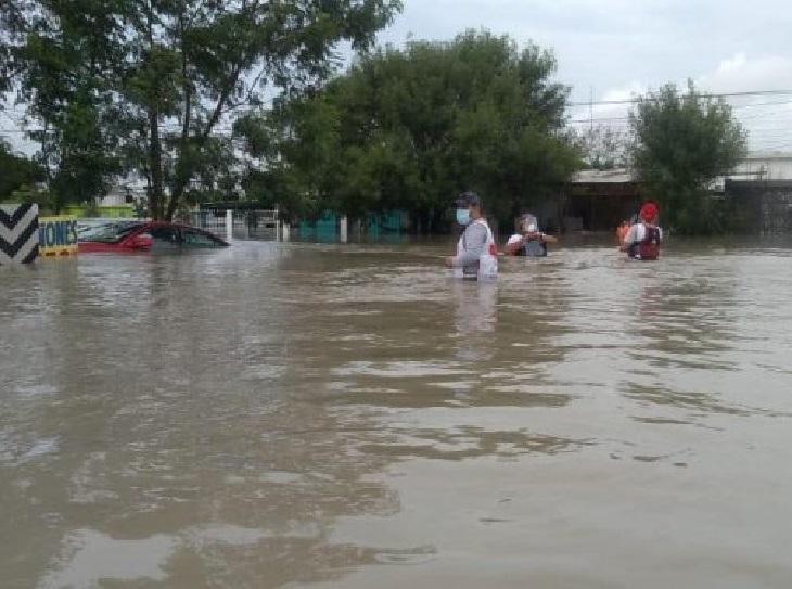 betty alluvione cani costa