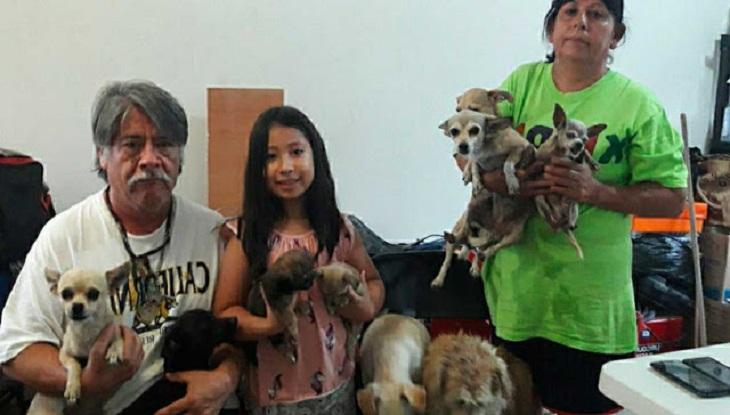 betty famiglia salva cani