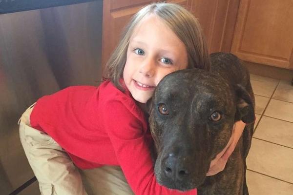 bambino che abbraccia un cane
