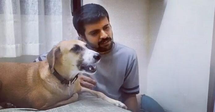 Cane canta con il proprietario