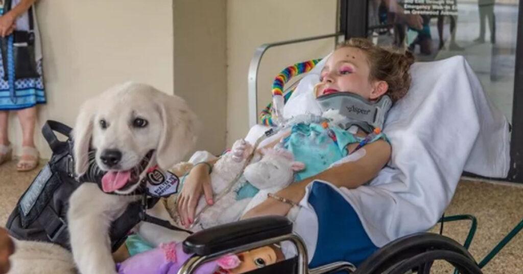 Cucciolo di Golden Retriever con una bambina in ospedale