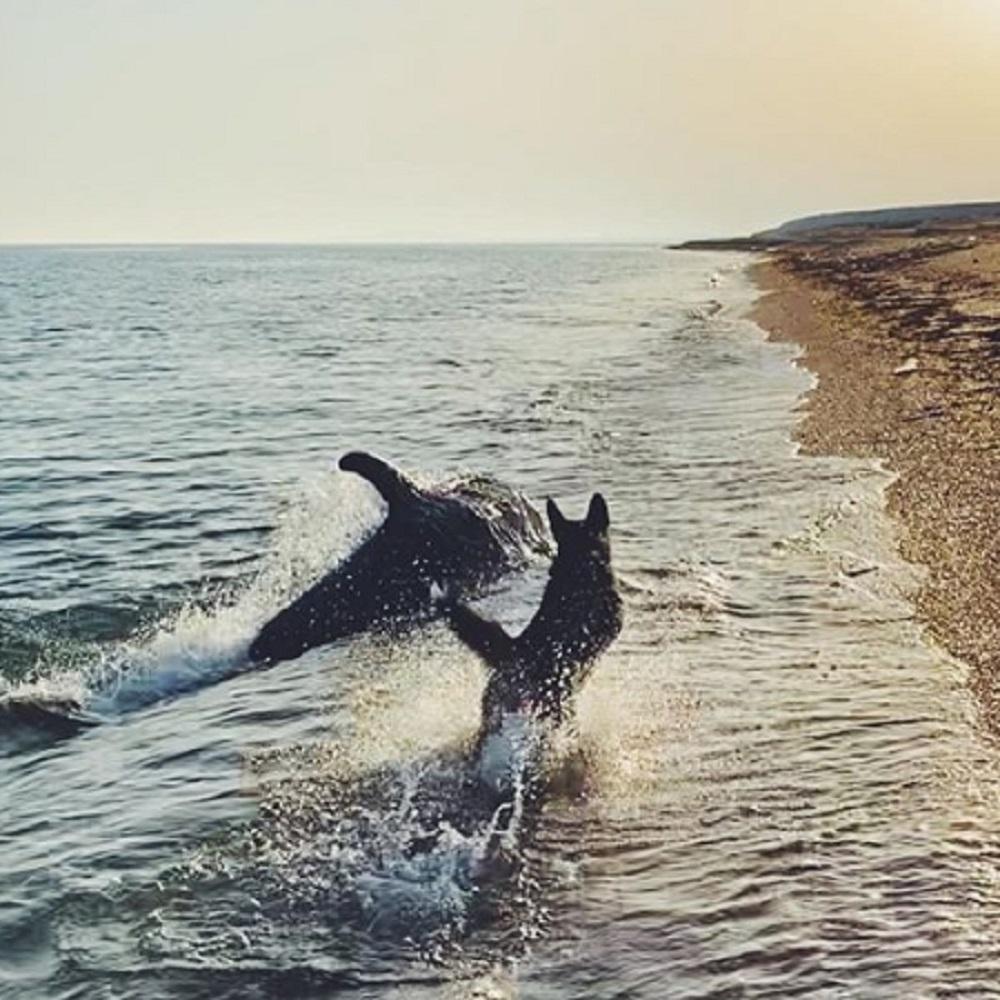 patrick cane gioca acqua