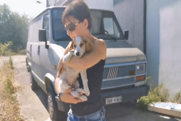 Un cucciolo di cane è stato salvato in tempo (VIDEO)