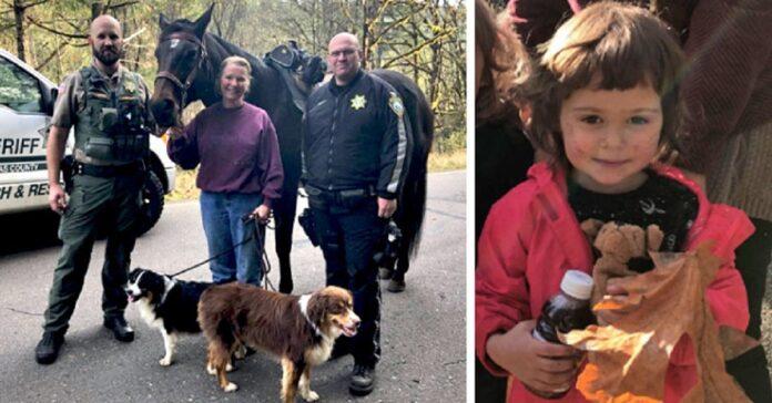 due cani salvano bambina dispersa bosco