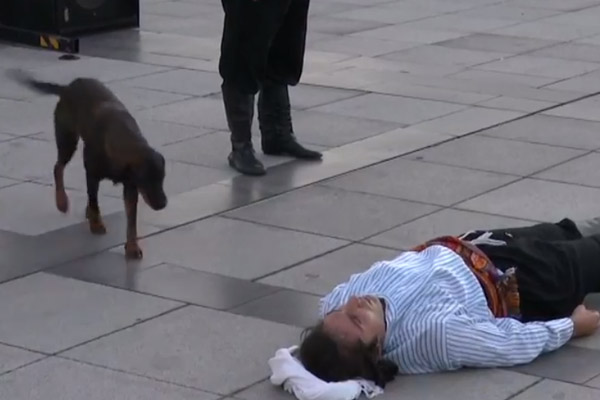 Il cane randagio interrompe la performance di un attore che si finge morto per confortarlo (video)