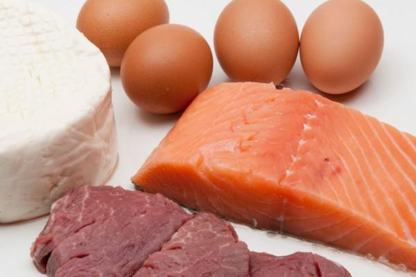 Cani e massa muscolare: quali sono gli alimenti giusti per svilupparla?