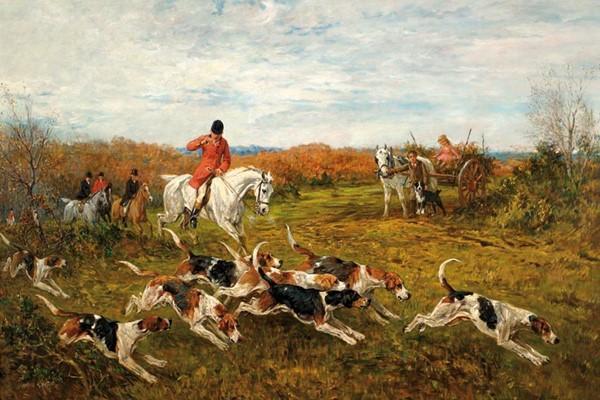 Cani da caccia alla volpe: quali sono? Elenco di tutte le razze adatte