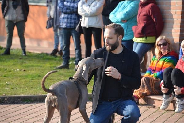 Cani reagiscono sentendo abbaiare altri cani: ecco perché lo fanno