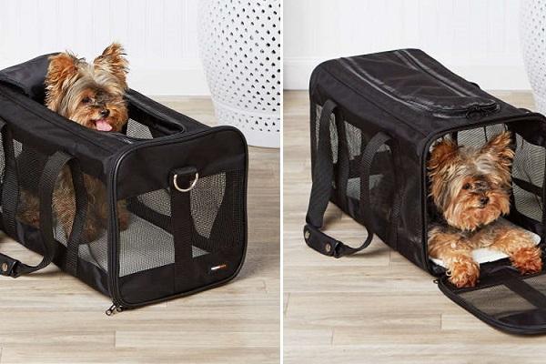 cane in trasportino omologato