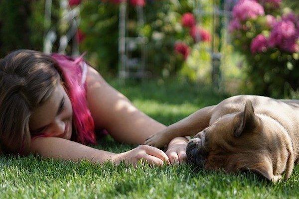contatto importante fra cane e uomo