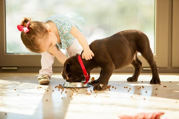 bambina e cucciolo di cane