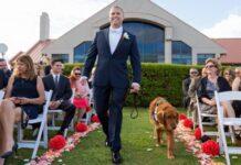 gabe cane testimone matrimonio proprietario