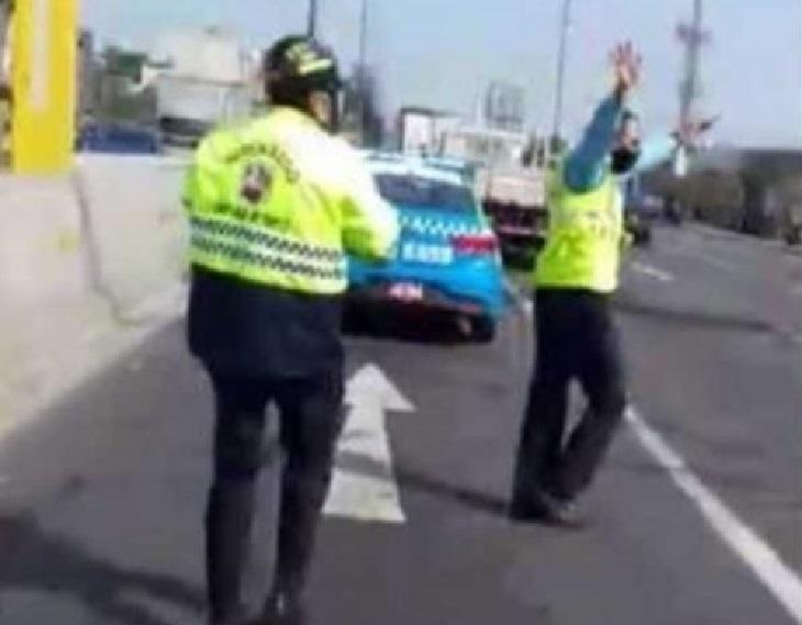 Il salvataggio del cane nel bel mezzo dell'autostrada (VIDEO)