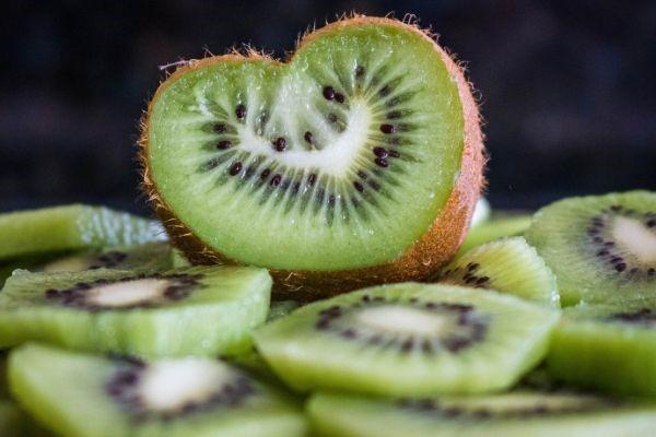 Quale frutta possono mangiare i cani? Elenco completo e piccoli consigli