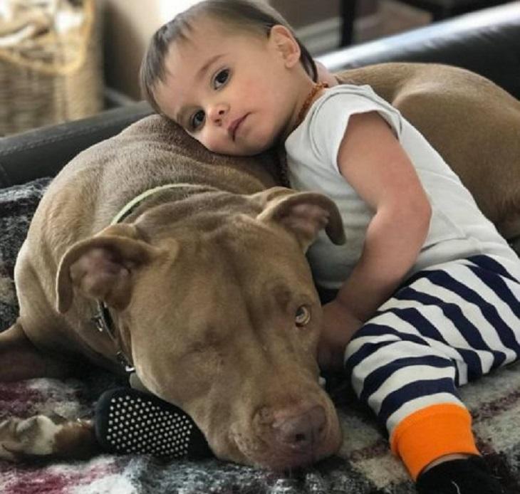 riddick cane trova famiglia