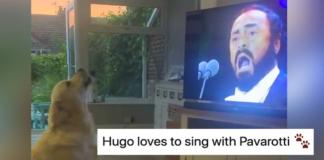 Hugo canta con Pavarotti