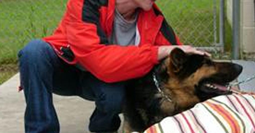 Cane con la sua proprietaria