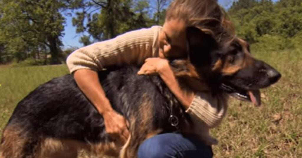 Cane abbracciato da una donna