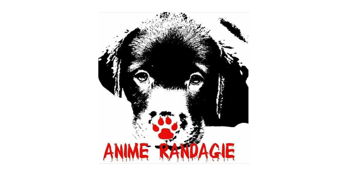 Granito, logo Anime Randagie Bovalino