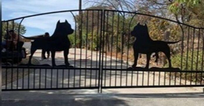 cancello dedicato ai Pitbull