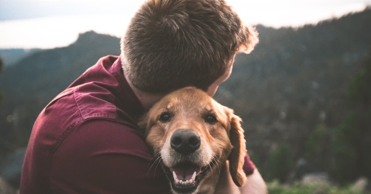 Come si fa ad amare davvero un cane, ricambiando il suo sentimento?