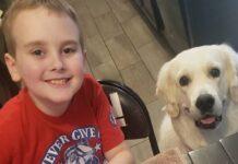bacon la cucciola che aiuta fratellino ansia