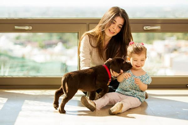 Cane che attacca i bambini: come gestire ed eliminare questo comportamento