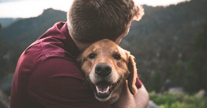 ragazzo appraccia cane