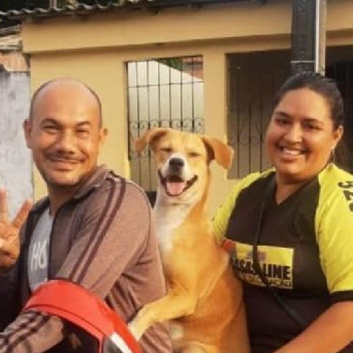 Delphina, la cucciola salvata da un giornalista davanti l'ospedale (FOTO)