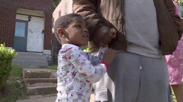 Il cucciolo di pitbull trova un bambino smarrito e si prende cura di lui (VIDEO)