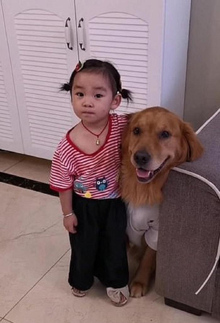 cane bambina amicizia
