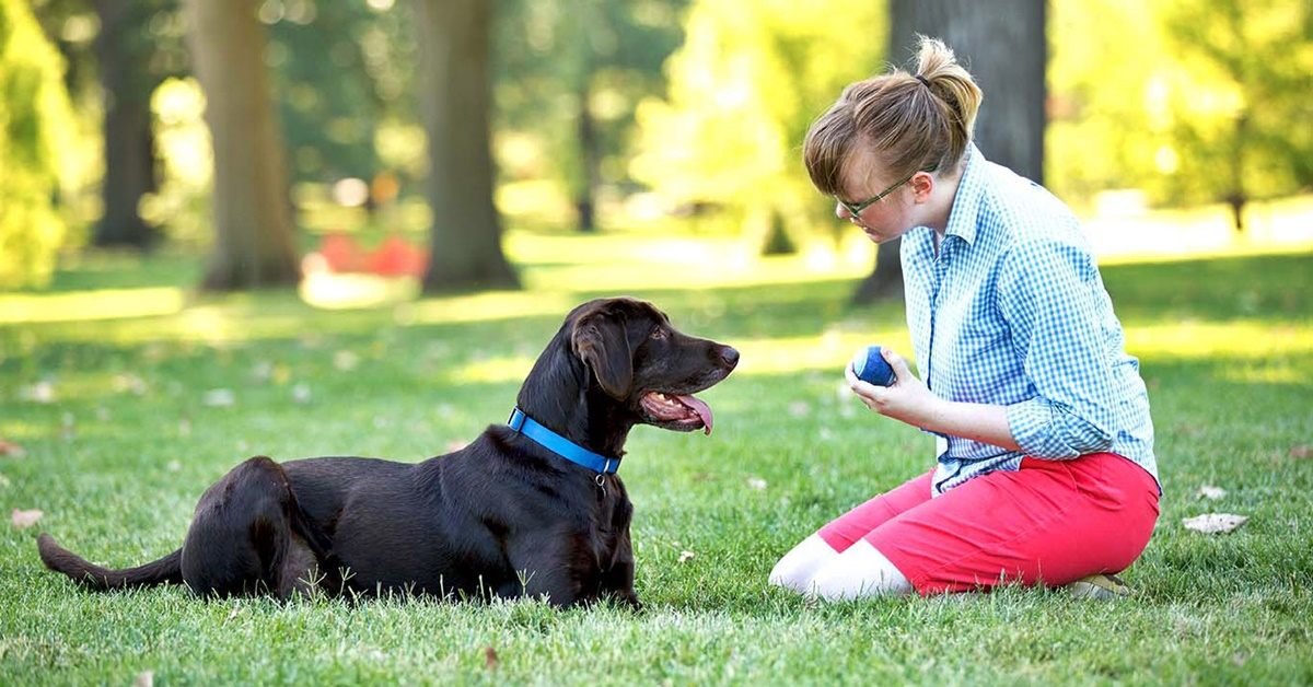 addestrare un cane al parco