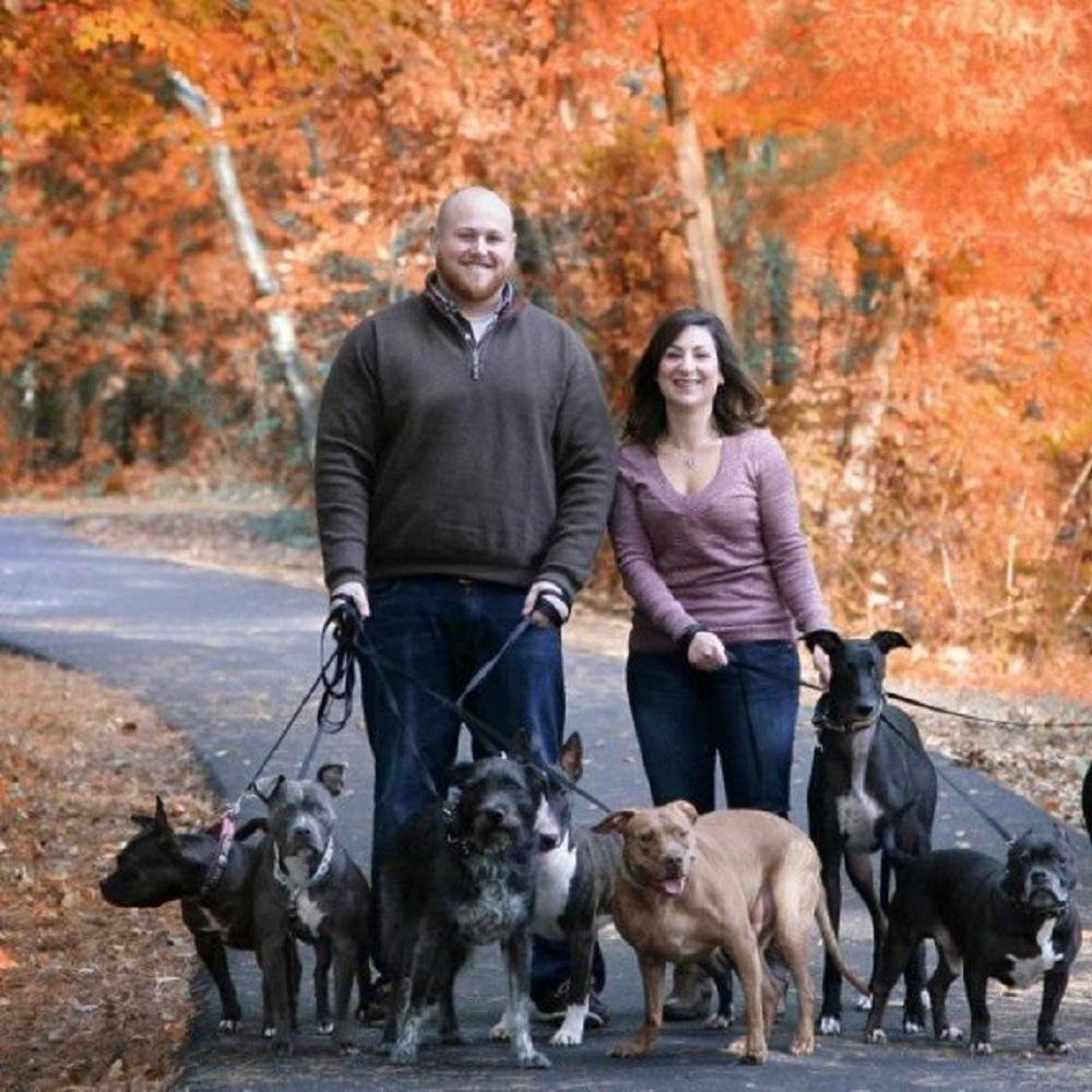 20 cani amore famiglia hughes