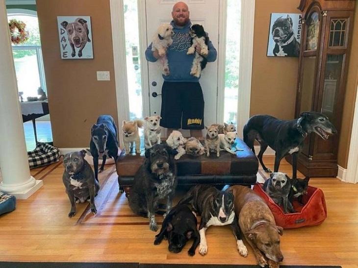 Per far vivere meglio i loro 20 cani spendono circa 55.000$ (VIDEO)