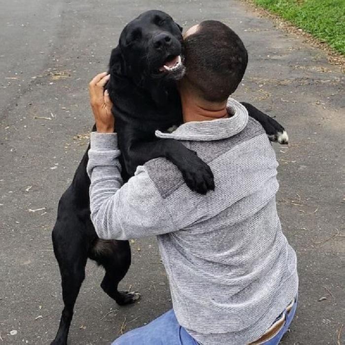 Un postino diventa il migliore amico di tutti i cagnolini del quartiere (FOTO)