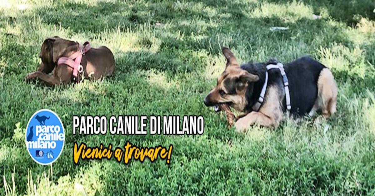 Parco Canile di Milano