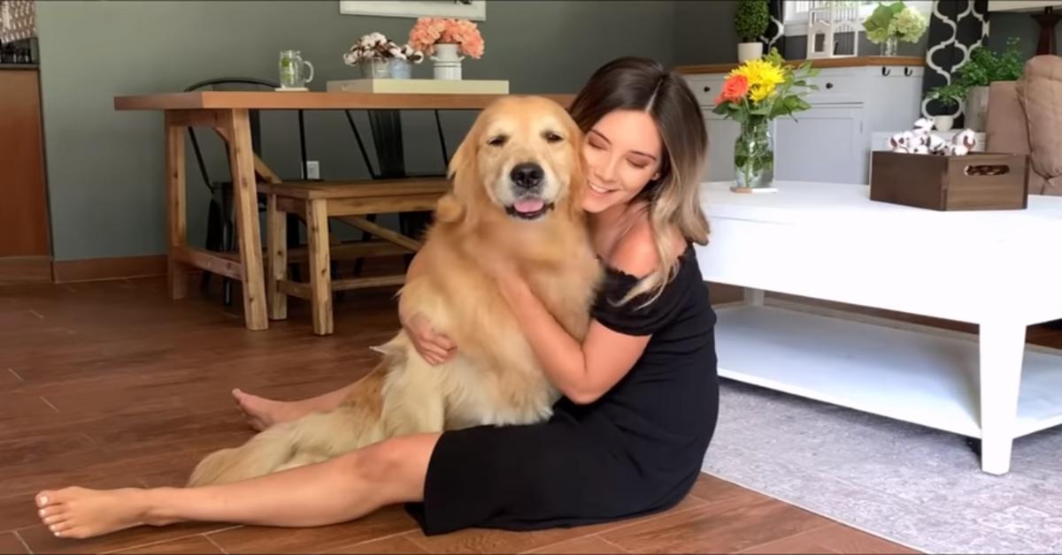 Tucker è geloso e si arrabbia vedendo che la sua mamma umana coccola un altro cane (VIDEO)