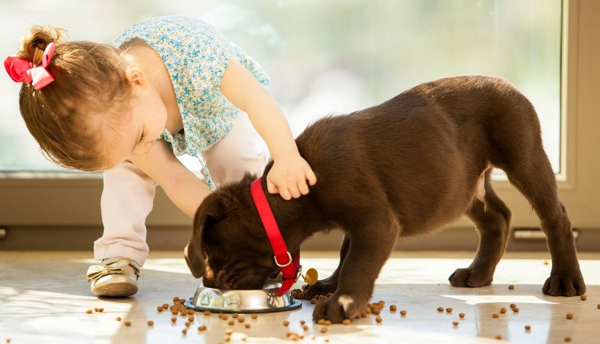 bambina gioca con cucciolo