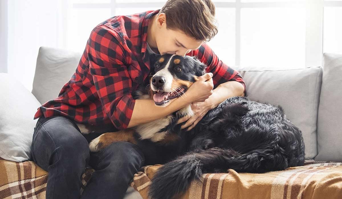 abbracciare il proprio cane