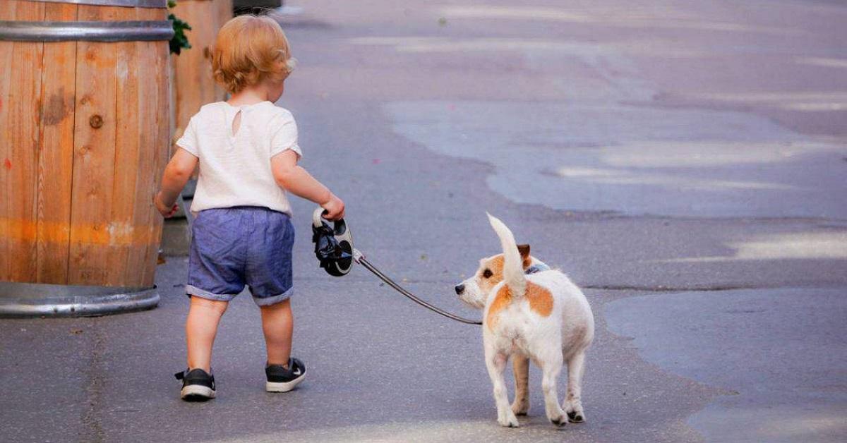 bimbo con cane al guinzaglio