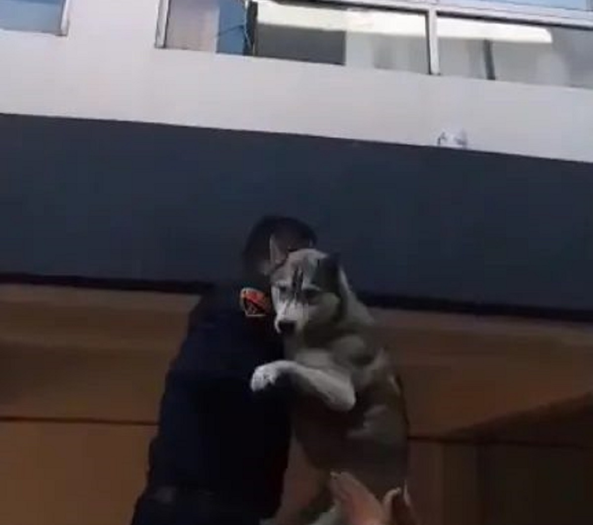 Cane Husky salvato dalla polizia durante un incendio (VIDEO)