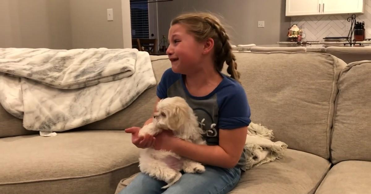 Un cucciolo di cane rende felice una bambina il giorno di Natale (VIDEO)