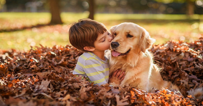 bambino con Golden Retriever