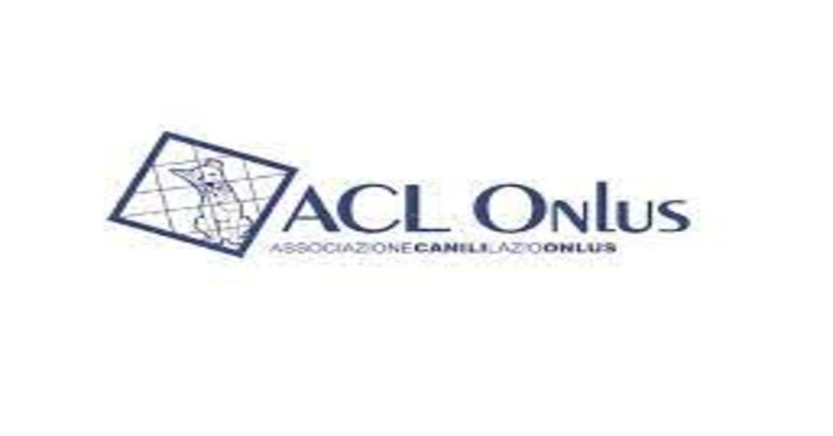 ACL Onlus: Marley, un dolcissimo quattro zampe da adottare