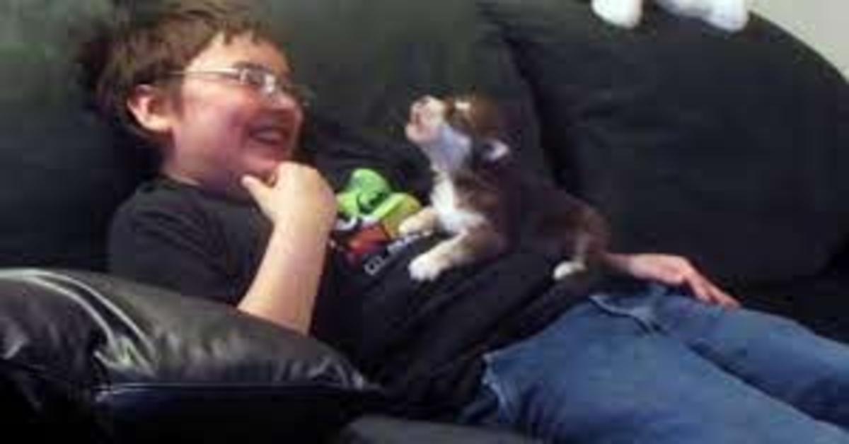 Il cucciolo Belka impara ad ululare (VIDEO)