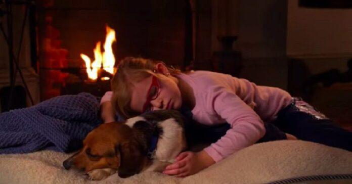 nessuno voleva cucciola beagle suzie ragazzina cambia vita