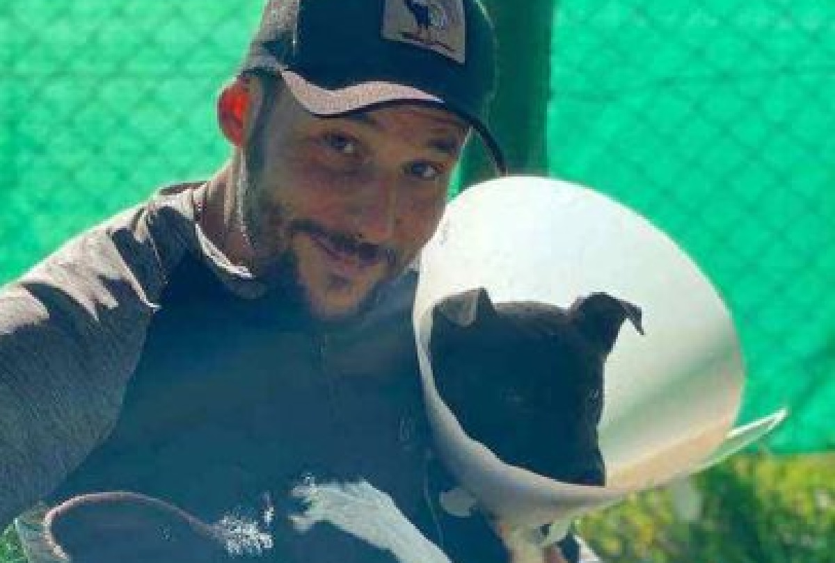 Rudi, il cane salvato dopo un grave incidente in autostrada (VIDEO)