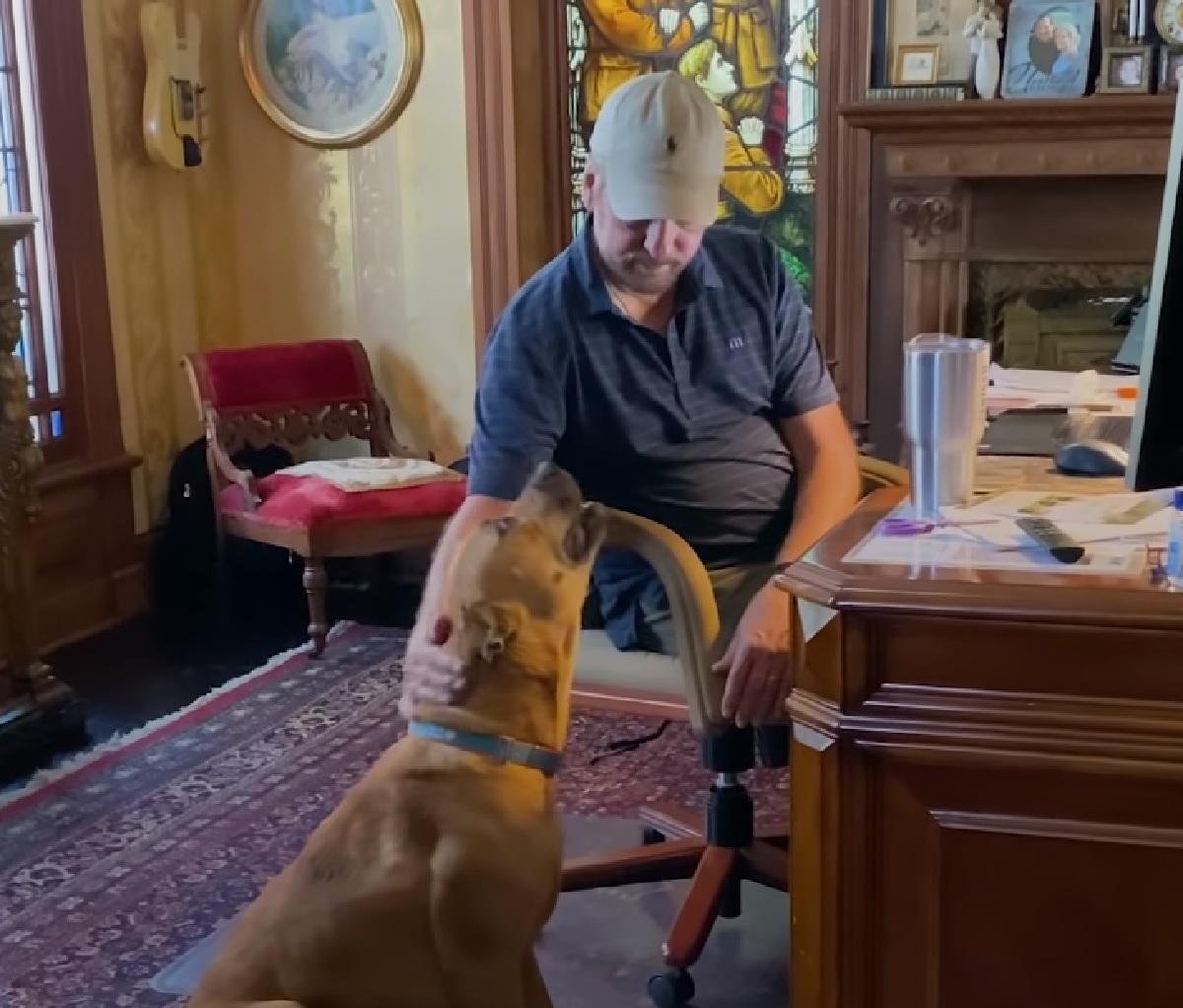 Un cucciolo di cane ci mette un anno per fidarsi di alcune persone, il video ci mostra la sua nuova vita