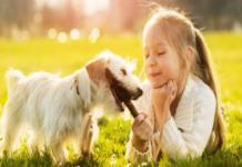 bimba gioca con cane